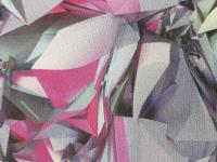 Color 300 rosa anorak